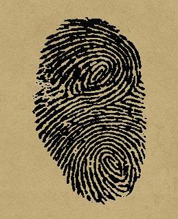 fingerprints7.jpg