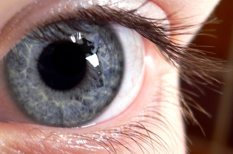 Blue_eye.jpg