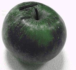 261px-Apple_Poznan_black.jpg