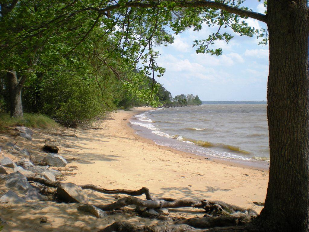 Beach_at_Historic_Jamestown_National_Park_-_Stierch.jpg