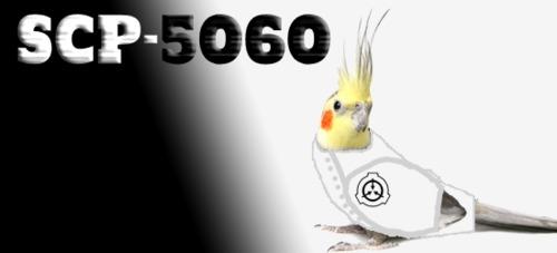 SCP-5060-PL%20photo